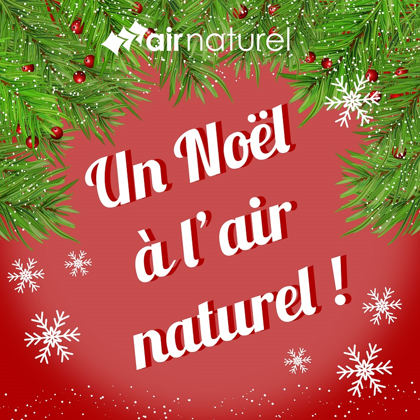 Un noël à l'air naturel